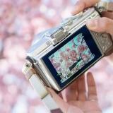 写真:散る桜、残る桜も散る桜の言葉から恋愛を改善する